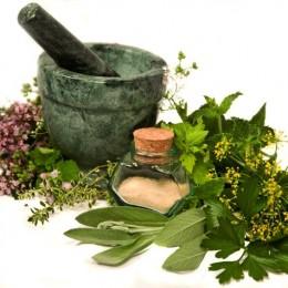 How Herbal Breast Enlargement Works