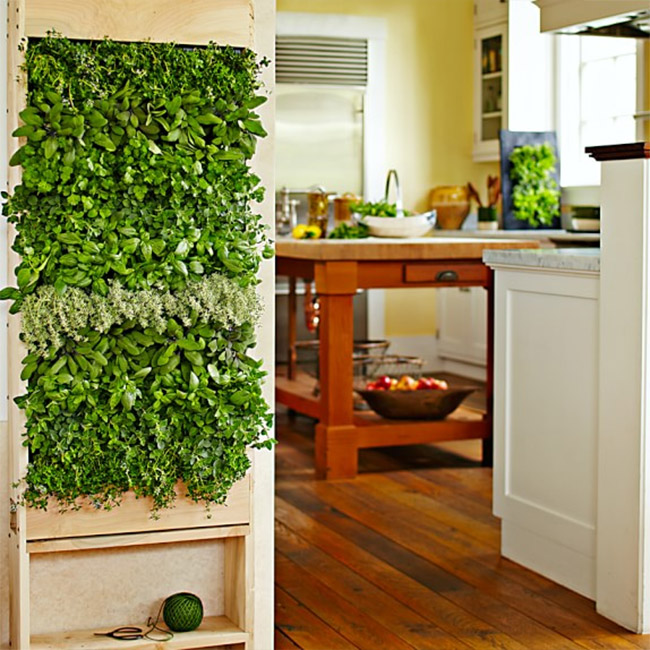 Five Ways to Bring the Outdoors Inside your Home this Summer