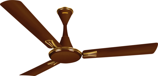 Locating the Ideal Ceiling Fan